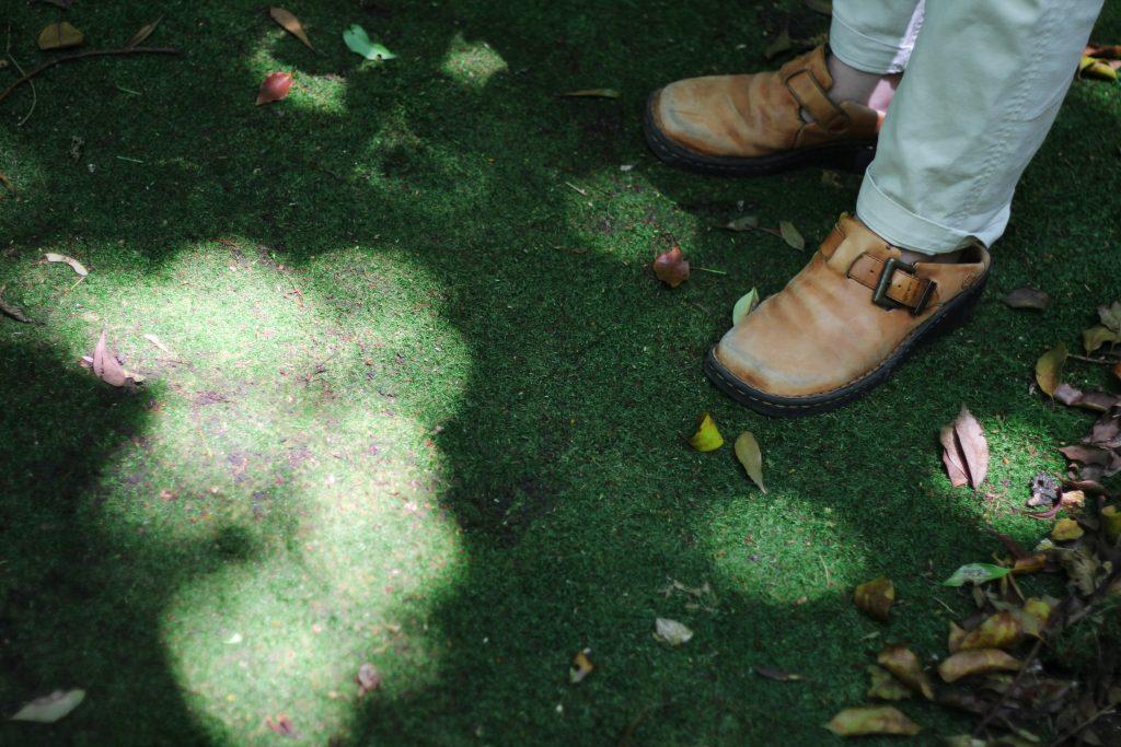 琴平公園のイチョウ園で見られる、丸い木漏れ日